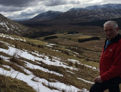 New Native Woodland created in Maam Valley