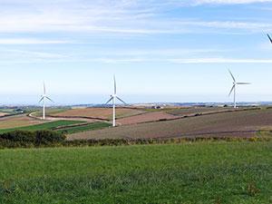 Wind Farm Consultancy